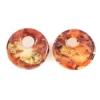 Lamp Bead Revolution Disc 2Pc 20mm Amazon Canyon